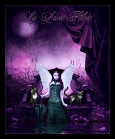 "La Lune Féline In English ""The Feline Moon"" A colab between myself, My Husband =silentfuneral & =Dezzan I had allot of fun taking the solid bla. Angel Pictures, Worlds Largest, Digital Art, Wings, Batman, Deviantart, Fantasy, Superhero, Purple"