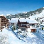 New analysis shows that demand for property in the Alps is rising | Europe | News