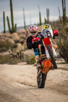 What'ya looking at. a little last minute wheelie for Wednesday. Scott Bright at the 2018 BAJA RALLY. Triumph Motorcycles, Custom Motorcycles, Dirt Bike Girl, Girl Motorcycle, Motorcycle Quotes, Skull Wallpaper, Dirtbikes, Street Bikes, Go Kart