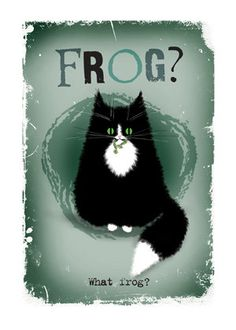 Cat card What frog question mark funny cat by MADOLDCATLADY, £2.80