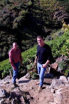 Chef Michael Chiarello, Bottega, Napa Valley, with José Manuel Rodríguez, President of the D.O. Ribeira Sacra and producer of The Spanish Artisan Wine Group wine, Décima, in José Manuel's precipitously steep Ribeira Sacra Mencía vineyards on the Sil River. Photo by Gerry Dawes©2012 / gerrydawes@aol.com / Facebook / Twitter / Pinterest.