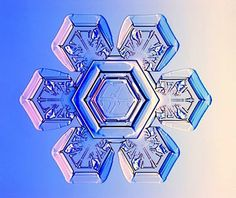 snowflake microscopic - Bing Images