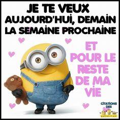 http://www.nicolamarmo.it/Minion-Peluche-Moi-Moche-et-méchant-Freedonian-Chapeau-de-Paille-30-cm-Peluches-i835249/