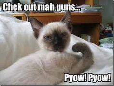 pyow! pyow! :D