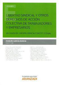 Libertad sindical y otros derechos de acción colectiva de trabajadores y empresarios : 20 casos de jurisprudencia constitucional