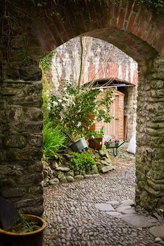 Beautiful cobbled stone street in Clovelly, Devon, England