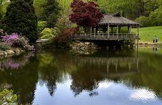 Brookside Gardens.