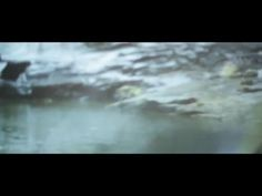 Field Division 'Hollow Body Weather' (Official Video) - YouTube
