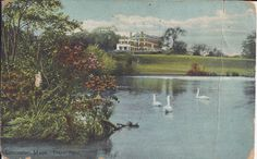 Lancaster, Mass. Thayer Pond:  Amelia's cards were graciously donated to the museum by her granddaughter, Sylvie Duquette of Lacolle, Québec. They were sent our way because of their historical link of Oromocto.   These records can be viewed at the New Brunswick Provincial Archives. They are catalogued in the York Sunbury Historical Society Collection (MC300-MS126). The correspondences on the back of the postcards have been posted on the Fredericton Region Museum Facebook page. New Brunswick, Historical Society, Lancaster, Wonderful Places, Pond, Museum, Amelia, Postcards, Painting