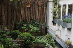 A Ceramicist and an Architect in Paris Gardenista