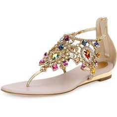 Rene Caovilla Jewel-Embellished Flat Thong Sandal ($1,125) ❤ liked on Polyvore featuring shoes, sandals, multi colors, shoes sandals thongs, embellished shoes, jewel shoes, embellished sandals, decorating shoes and thong sandals