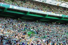 Best Club, Scp, Soccer, Sports, Football, European Football, Sport, Soccer Ball, Futbol