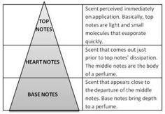 Olfactive triangle: A fragrance has 3 phases: birth, life and death. It evolves over time and does not leave the same scent at the moment we apply it as it does a few hours later. Fragrances are like a brilliant (or not so brilliant) book that we open (Top Notes), discover and read (Heart notes) and that we finish, feeling either fulfilment or disillusionment (Base notes).