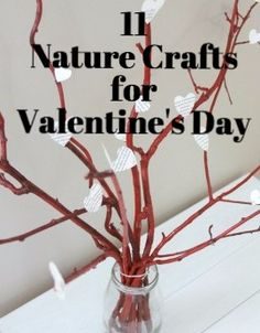 Valentine's Day is the perfect opportunity to do some sweet nature crafts!