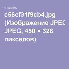 c56ef31f9cb4.jpg (Изображение JPEG, 450×326 пикселов)