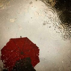 Waiting in the Rain . Download this photo by Janine Robinson on Unsplash Reflection Pictures, Rain Pictures, Time Lapse Photography, Bokeh Photography, Rain Drops On Window, Rain Wallpapers, Pink Umbrella, Royalty Free Images, Pink Flowers