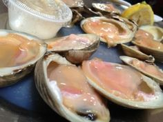 Raw clams on the Halfshell - Biggie's Clam Bar - Hoboken - New Jersey - Tony Mangia - Devil Gourmet - www.DevilGourmet.com