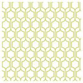 "Found it at Wayfair - Bistro 750 33' x 21"" Trellis Wallpaper"