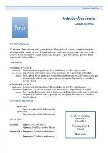 Plantilla Currículum Vitae - Modelo Funcional 1