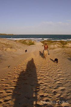 cavalgar nas dunas em direção à região do Rio Vermelho, Norte da Ilha.