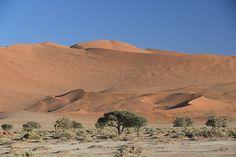 The majesty of Namibia's Sossusvlei dunes Africa Travel, Us Travel, Dune, Wilderness, Safari, Traveling, Tours, Sky, Mountains