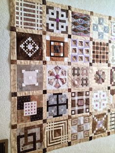 "These blocks are from the book, ""Japanese Taupe Quilts"" by Susan Briscoe.  Still needs a border ! 