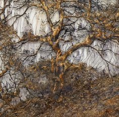 """MYSTIC FOREST"" Lesley Richmond Cotton/silk fabric, heat reactive base, metal patinas 32"" x 73"""
