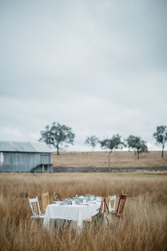 dining out in a field
