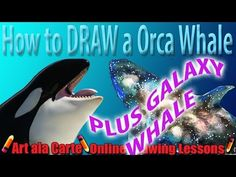How to draw a dragon base art pinterest how to draw draw how to draw a dragon base art pinterest how to draw draw and to draw ccuart Choice Image