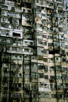 Kwaloon Walled City      Kowloon Walled City.    cannot say it often enough, Hak Nam (or Kowloon Walled City),is the most important reason, why i hate to be born too late.Believe me or not, but this place was the most natural living habitat for human beings i can imagine.
