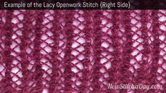 Example of the Lacy Openwork Stitch. (Right Side)