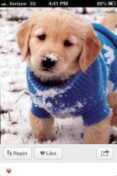 Awww so cute!!!!