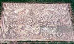 Foto stock : Floor mosaic with geometric motifs and octagons depicting animals from Jieh, old Porphyrion, Lebanon. Byzantine Civilization, 5th-6h Century