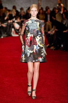 Erdem Fall 2014 Ready-to-Wear Runway - Erdem Ready-to-Wear Collection colours, embroidery