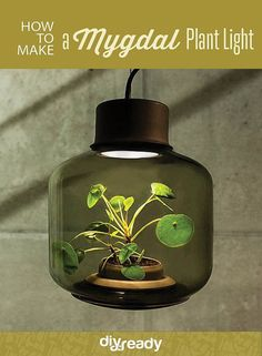 Try this Mygdal Plant Light in your windowless space by DIY Ready at http://diyready.com/how-to-make-a-mygdal-plant-light/