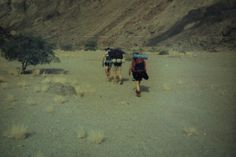 Fish River Canyon hiking trail, Namibia Hiking Trails, Fish, River, Beach, Places, Outdoor, Travel, Africa, Outdoors