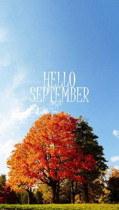 Wallpaper IPhone #hello September ⚪️