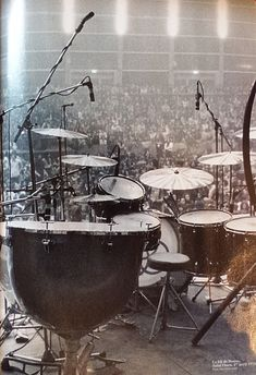 "sarahlaststand: "" sarahlaststand: "" Bonzo's Drum Kit, 1973 "" ""He only used a small kit, but he used to play large drums. He never played a large kit in terms of the number of drums - he only ever used four drums most of the time, and never had racks..."