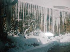 Renieblas (Soria) - hielo y nieve, diciembre 2.004, por Carmen hb