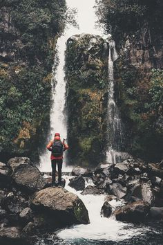 Envy Avenue. — ikwt:   Dawson Falls in Taranaki (lebackpacker)...