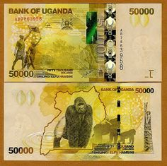 Gorilla: Banknotes - Uganda 50.000 Shillings (2010) Uganda Travel: Foreign Exchange and Travel Money Tips   The currency in Uganda is the Uganda Shilling (UGX/Ush). It is issued in denominations of 1000, 5000, 10,000, 20,000 and 50,000 Uganda Shillings notes.  Coins are available for smaller denominations of 50, 100, 200, 500 and 1,000 shillings.