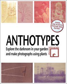 Anthotypes « Anthotypes « Formulas And How-To « AlternativePhotography.com