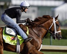ZsaZsa Bellagio: Kentucky Derby Beautiful