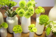 Lime...maybe blue ribbon around the vase? @traci rosendale