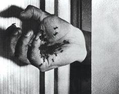 O Cão Andaluz de Luis Buñuel