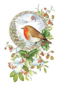 Seasons Greetings Robin Bird /& HOLLY rouge de Noël Papier Cadeau 6 Feuilles /& 6 étiquettes