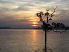 Trip from Neil Island To Port Blair in Cruise and Chidiatapu Sunset
