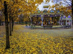 Very best places for a picnic in Paris. Paris Travel Tips Paris In Autumn, Paris 13, Paris In November, September, Paris Travel Tips, Merry Go Round, Yellow Leaves, Background For Photography, Months In A Year