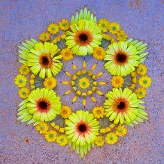 Kathy Klein #flowers Mandala, Flowers, Plants, Art, Art Background, Florals, Kunst, Plant, Flower