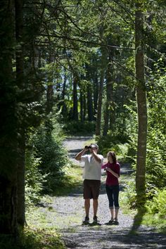 5 Must-See Sections of the Great Trail in New Brunswick .